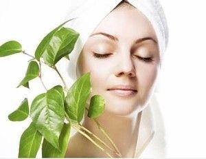 22 eram dicas de cuidados da pele natural para a pele oleosa, pele seca