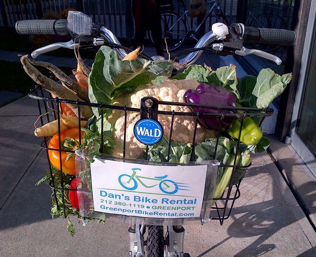 legumes da estação