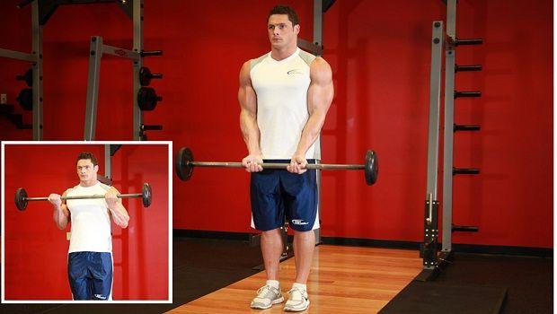 Melhores bíceps exercícios de força e musculação massa