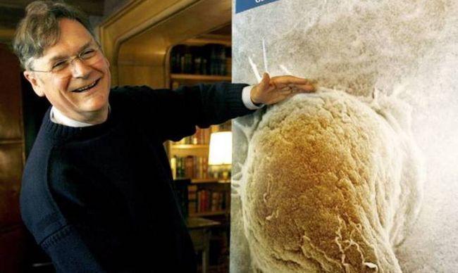 #Distractinglysexy: Notas de mulheres cientistas zombar Mr. Tim caça no twitter com fotos hilariantes!