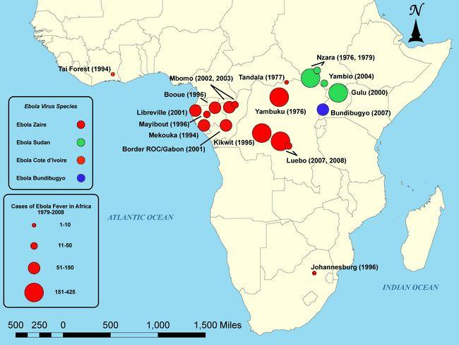 A história do vírus Ebola