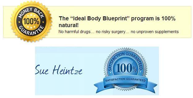 dicas ideais de queima de gordura corporal Blueprint