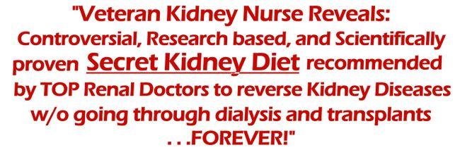 Kidney Diet Secrets Review - ele é confiável?