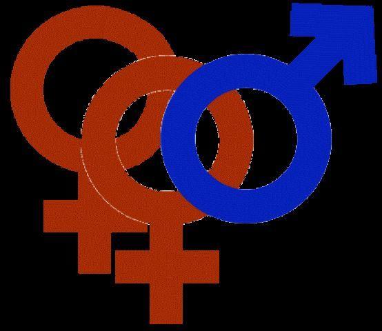 Supremo Tribunal da Índia proibiu os muçulmanos de ter várias esposas