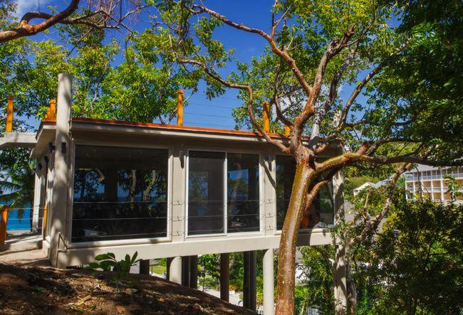 O estúdio rodada estiver em uma casa na árvore