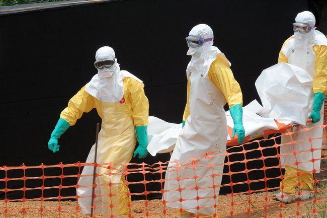 Ebola últimas notícias