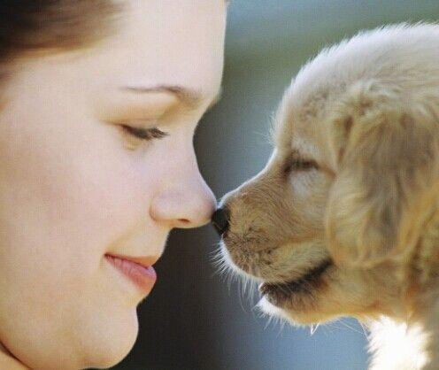 O que dizer quando alguém perde um animal de estimação